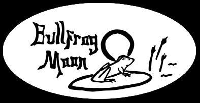 Bullfrog Moon playing  jam band rock music at D9 Brewing, Cornelius @ D9 Brewing
