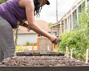 Hug Hilltop Urban Garden Weekly Volunteer Gardening Clean Up