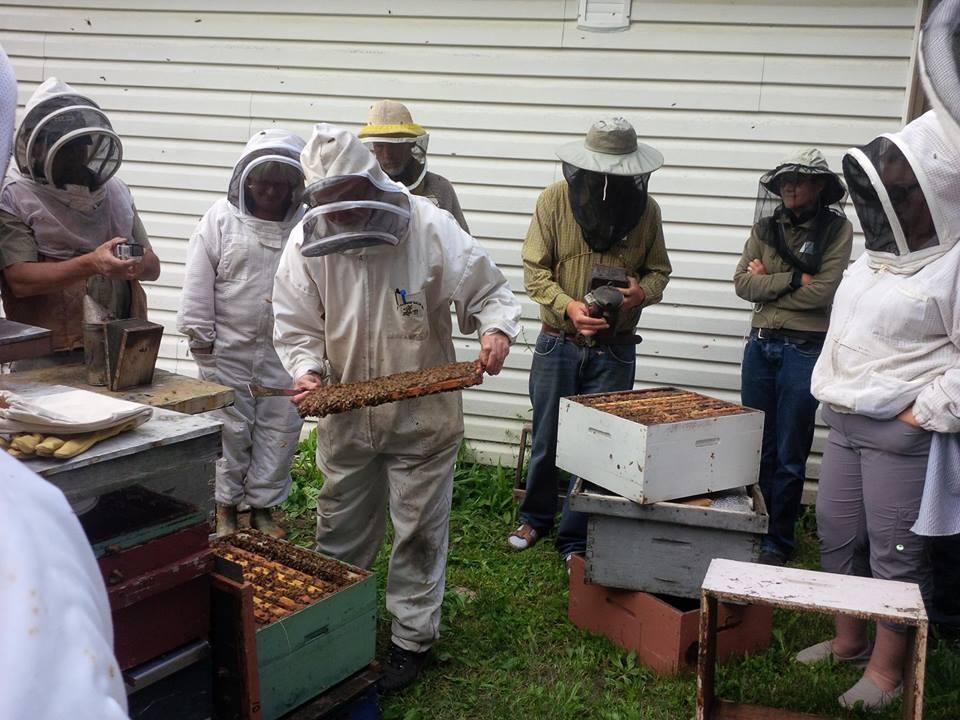 Beginner Beekeeping Course @ Revelstoke Community Centre |  |  |