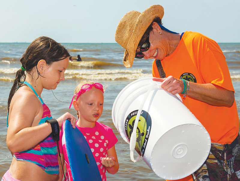 FREE Bucket Brigade: Interpretive Beach Tours @ Stewart Beach