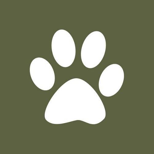 Tulsa Dog Training Club Agility Trial