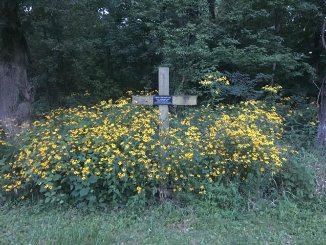 Fireside Chat - Growing in God\'s Garden