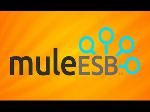 Guidance to get certified on Mule ESB