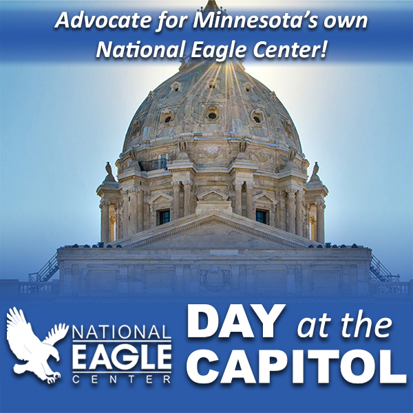 National Eagle Center Day at the Capitol