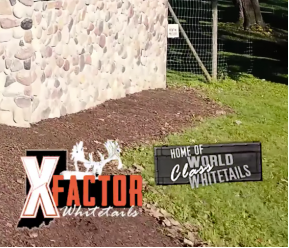 X Factor GNCC Off-Road Motorcycle and ATV Race @ X Factor Whitetails